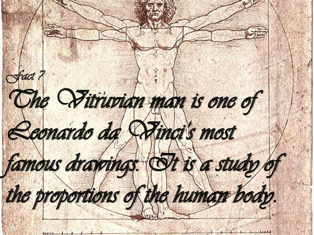 Fact 7 The Vitruvian man is one of Leonardo da Vinci's most famous drawings. It is a study of the proportions of the human