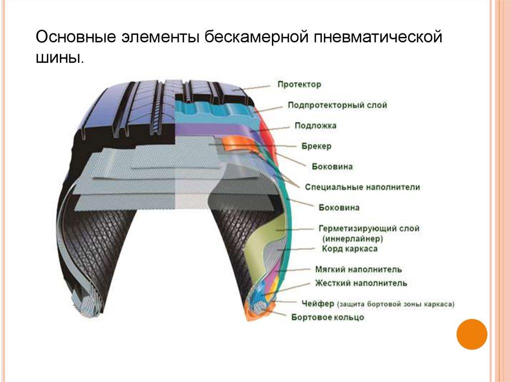 Девушка модель работы внутренних шин дольче и габбана пара