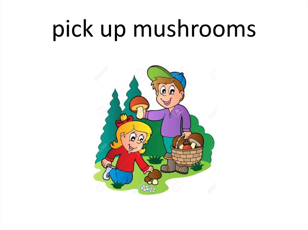 pick up mushrooms