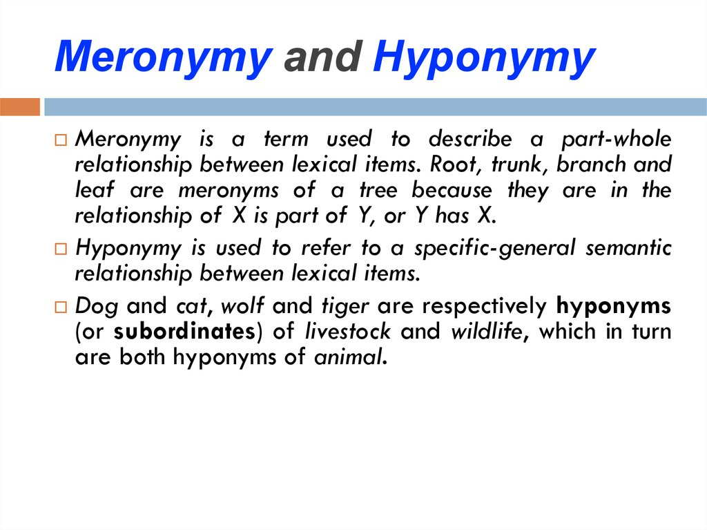 Meronymy and Hyponymy