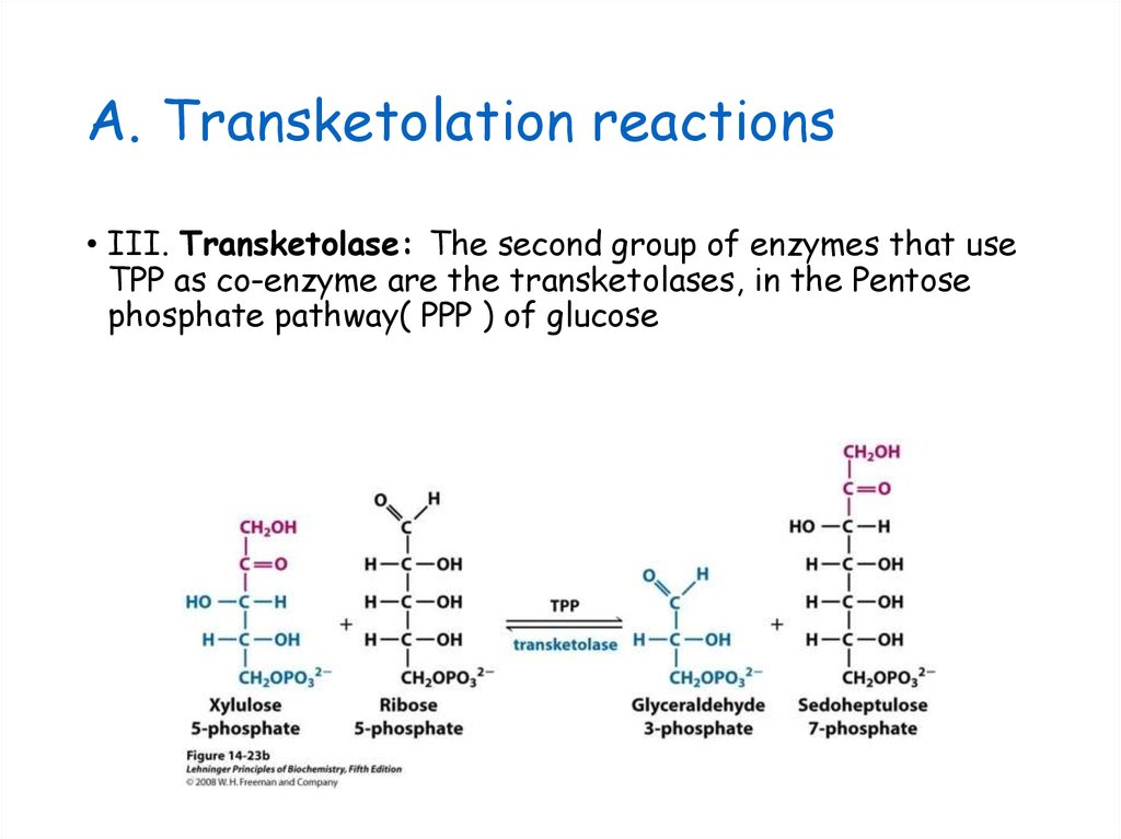 Transketolation reactions