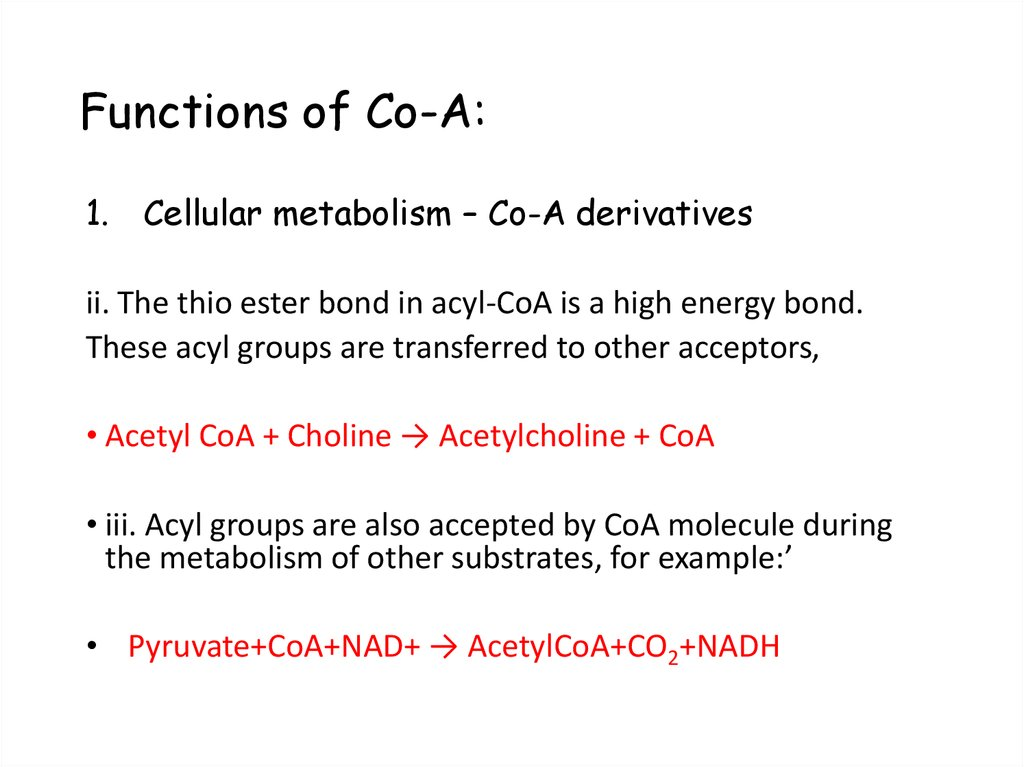 Functions of Co-A:
