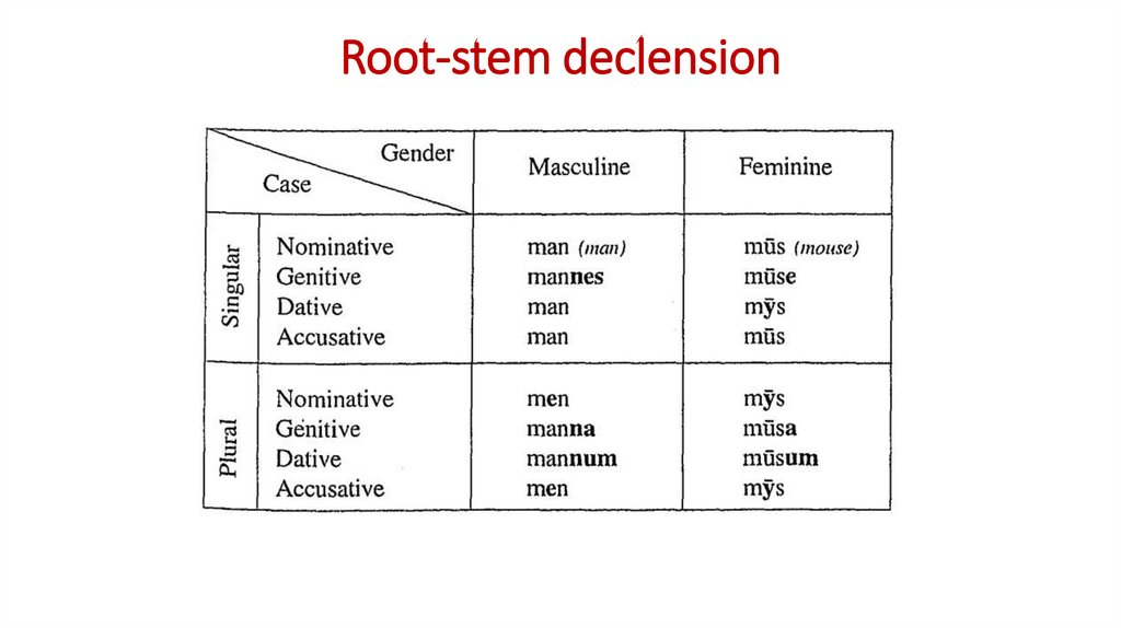 Root-stem declension