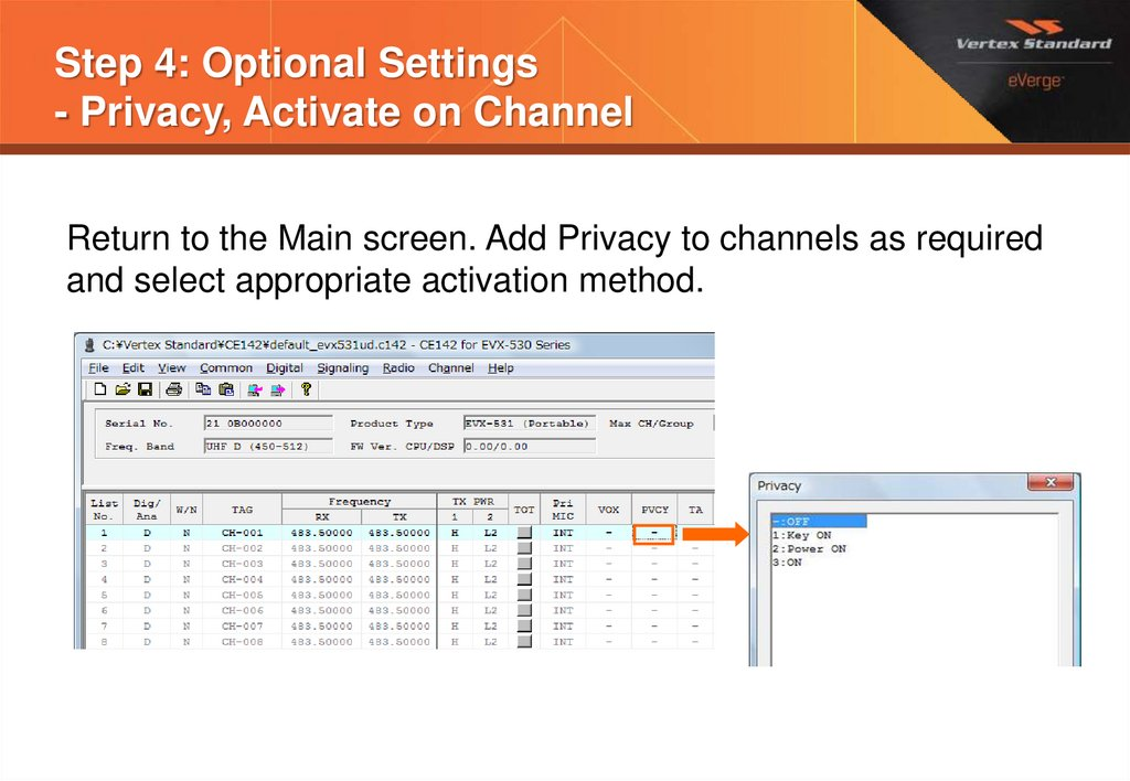 Step 4: Optional Settings - Privacy, Activate on Channel