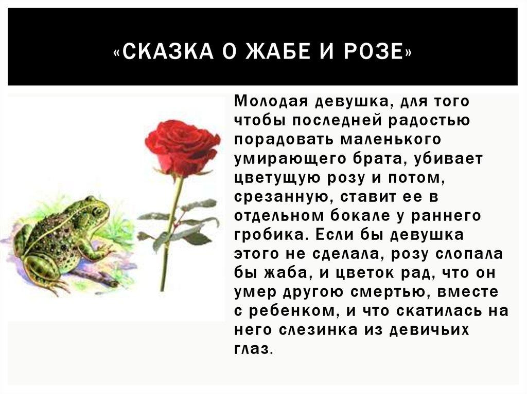 главная мысль сказки о жабе и розе с картинками этого