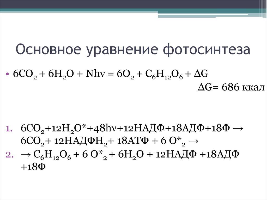 химическая формула фотосинтеза течением столетий романский