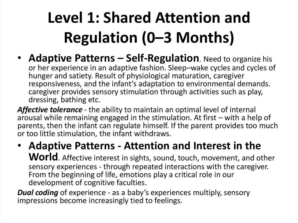 Level 1: Shared Attention and Regulation (0–3 Months)