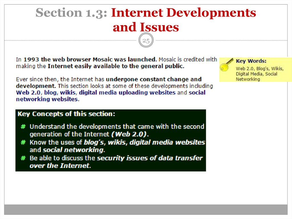 Section 1.3: Internet Developments and Issues