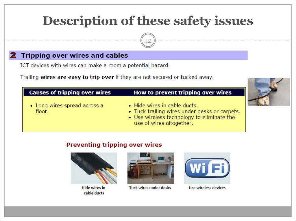 Description of these safety issues