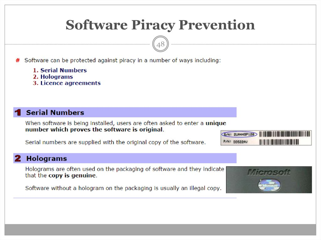 Software Piracy Prevention