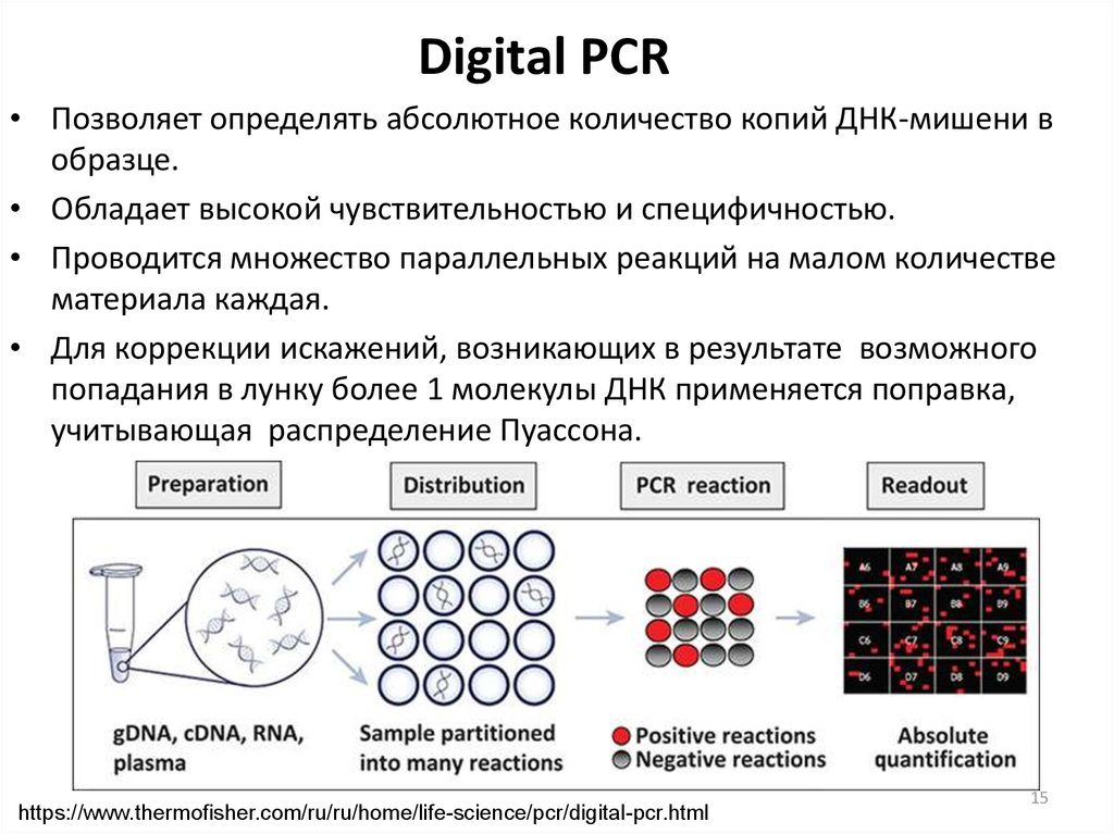 Digital PCR