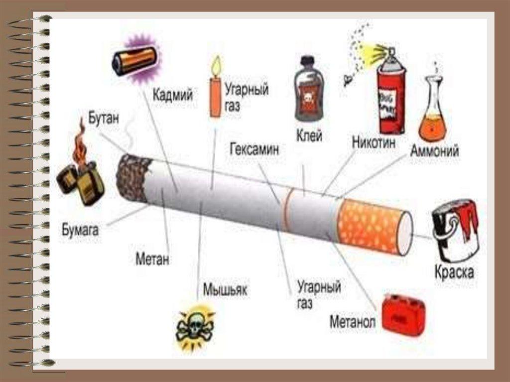 Сигарет онлайн 1 нет импорт сигареты купить