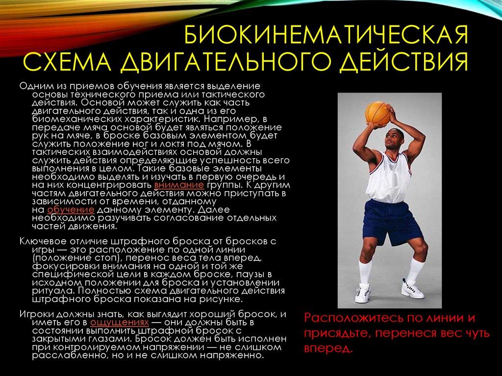 какой частью тела играют в баскетбол руками ногами верхней частью тела любой частью тела