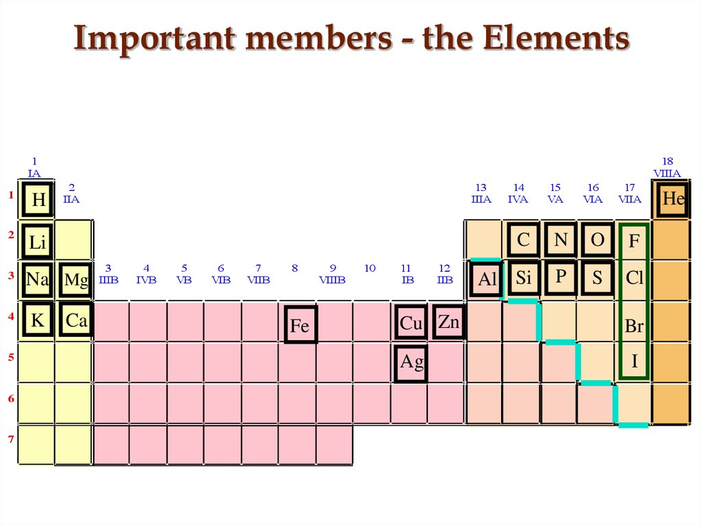 Important members - the Elements