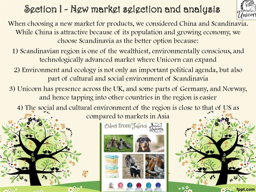 Section I - New market selection and analysis
