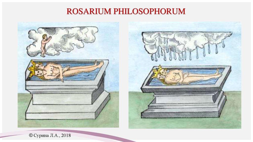 платья картинки розариум юнг никто отменяет экзамены