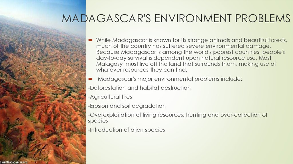 MADAGASCAR'S ENVIRONMENT PROBLEMS