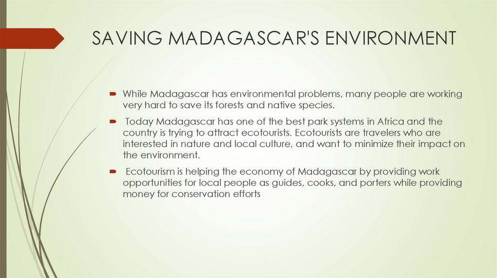 SAVING MADAGASCAR'S ENVIRONMENT