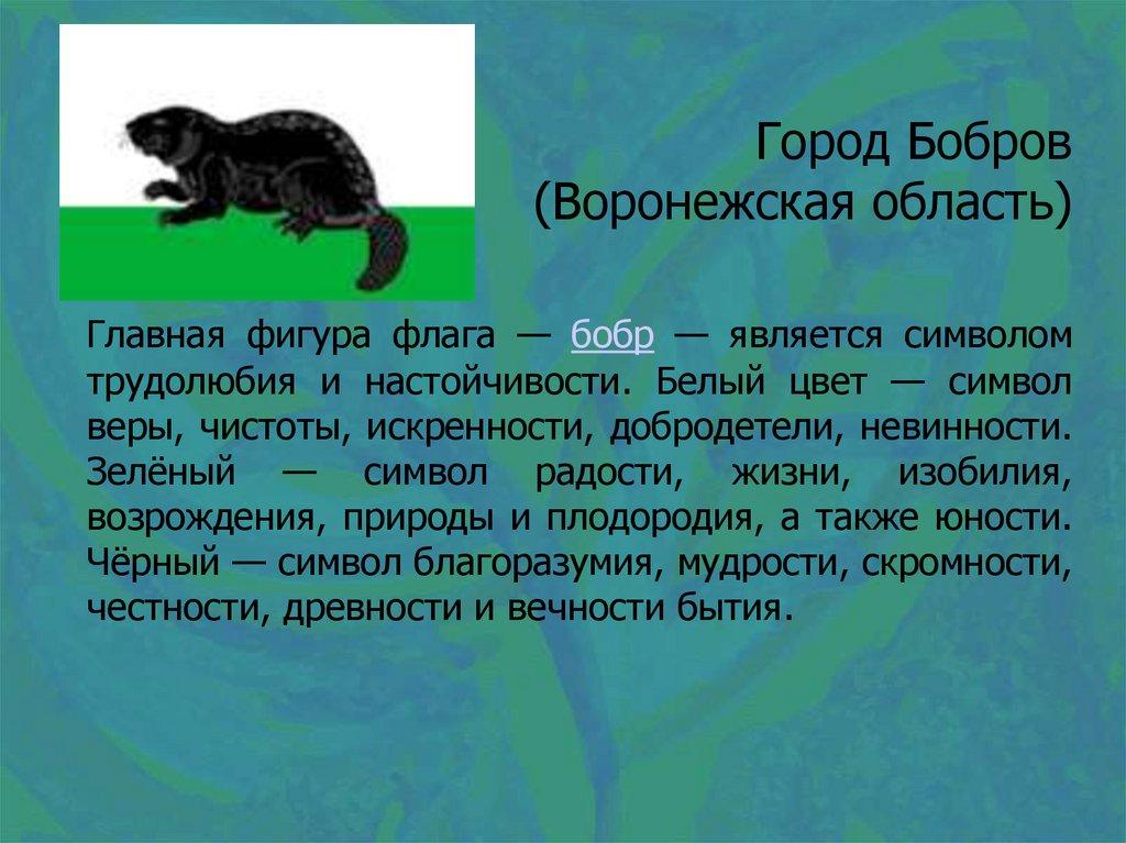 Работа онлайн бобров крупные модельные агентства москвы