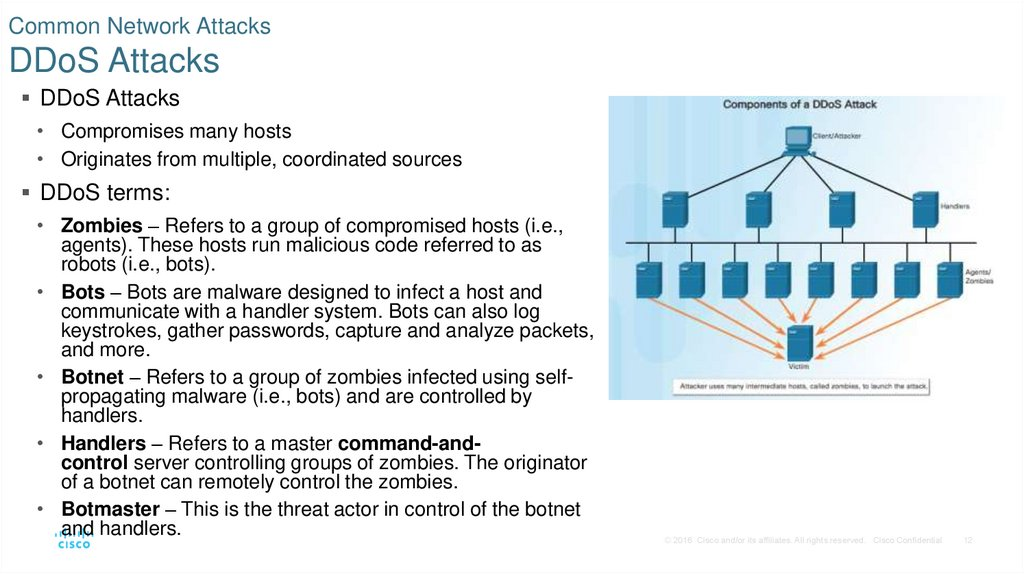 Common Network Attacks DDoS Attacks