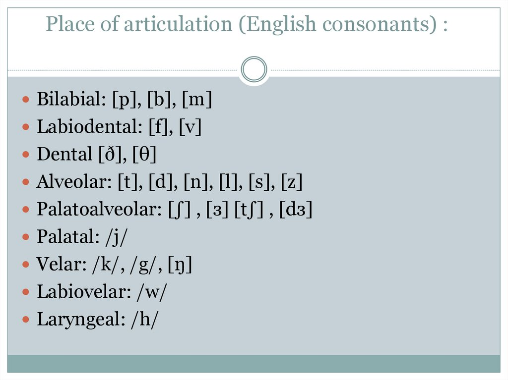 Place of articulation (English consonants) :
