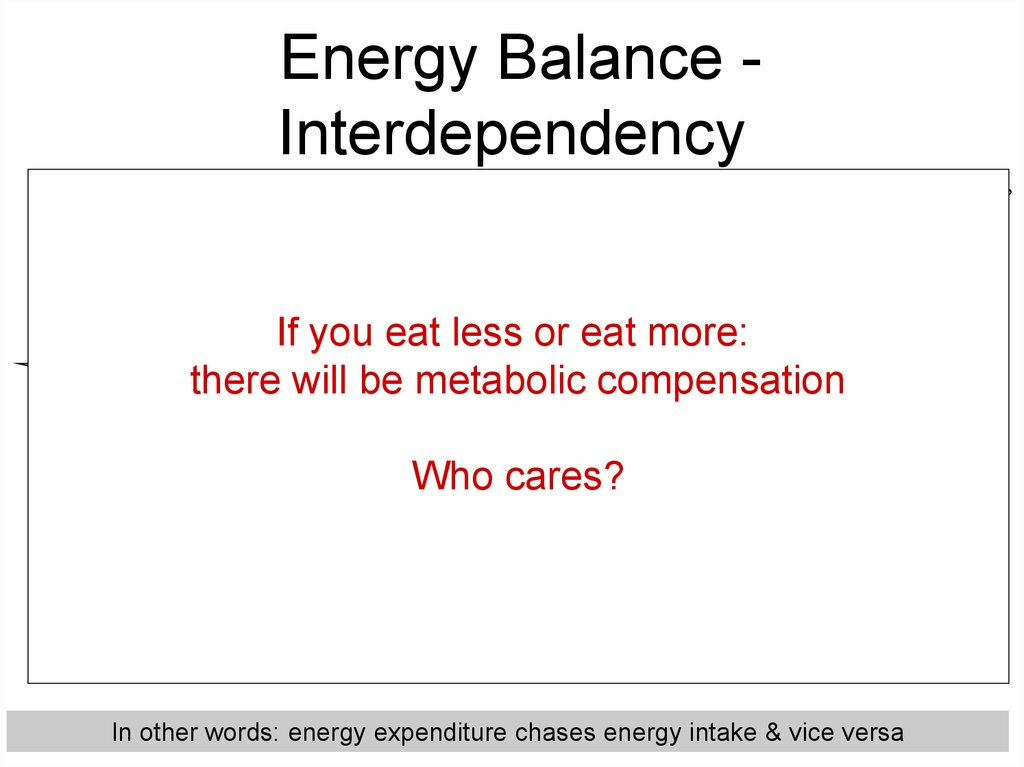 Energy Balance - Interdependency