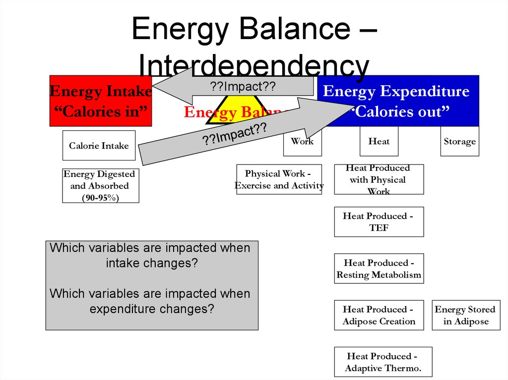 Energy Balance – Interdependency