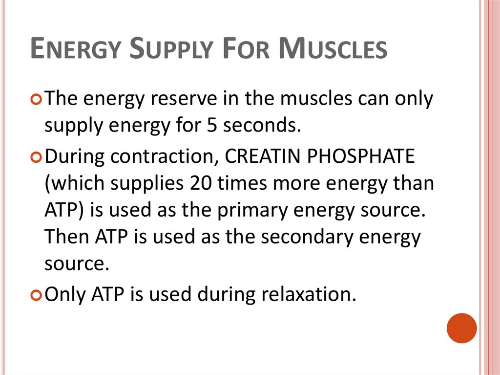 Energy Supply For Muscles