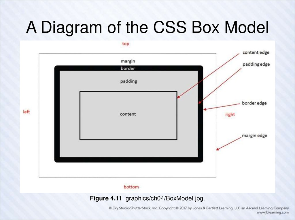 A Diagram of the CSS Box Model