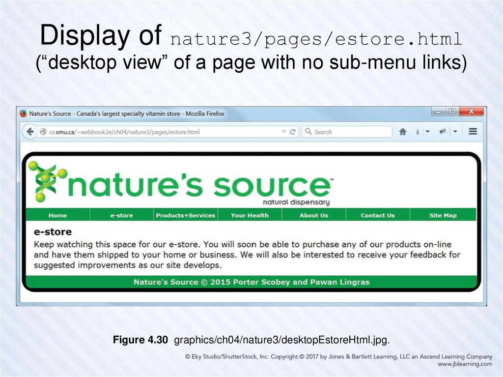 "Display of nature3/pages/estore.html (""desktop view"" of a page with no sub-menu links)"