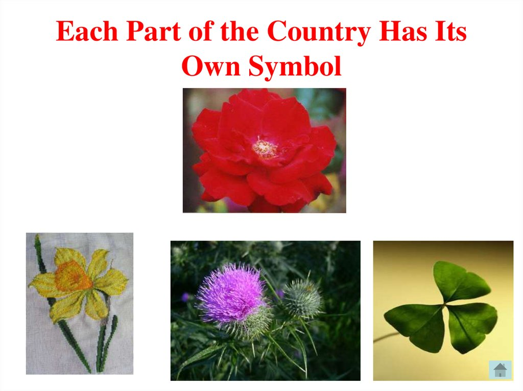 Each Part of the Country Has Its Own Symbol