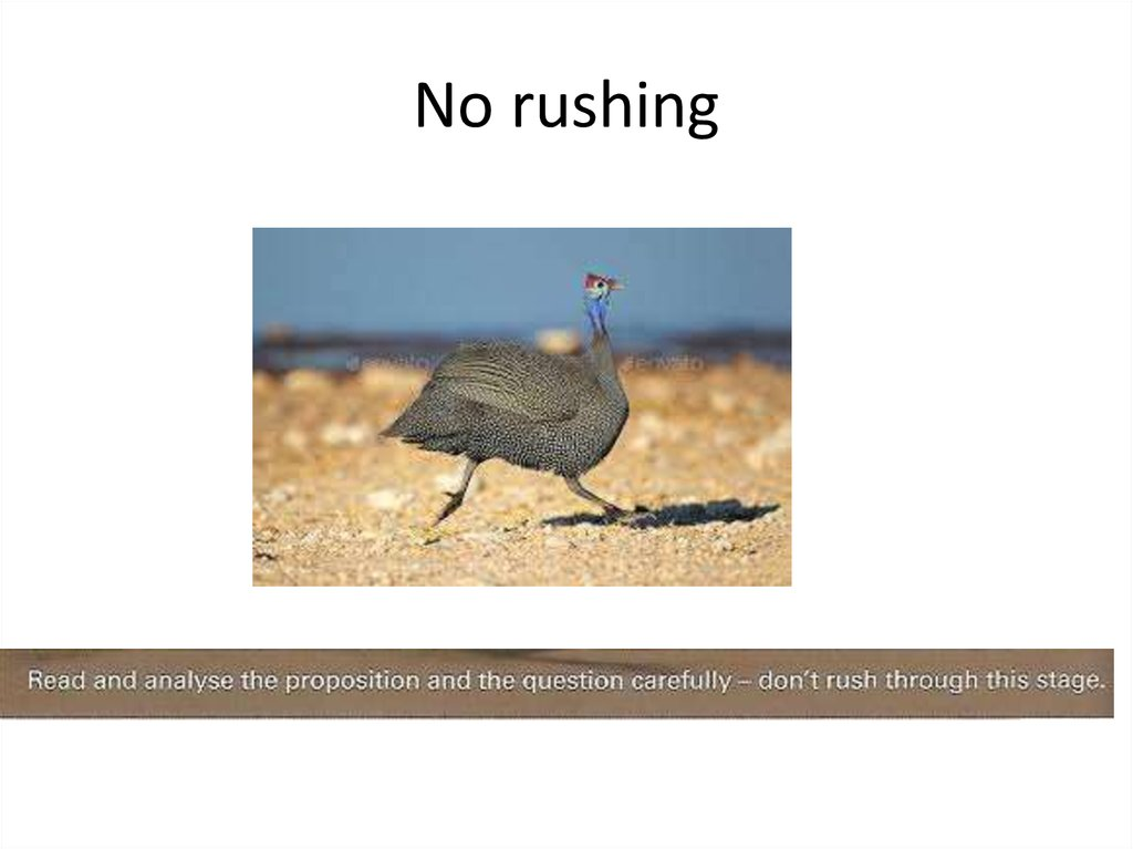 No rushing