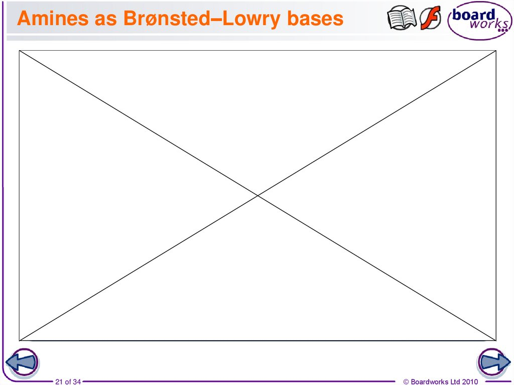 Amines as Brønsted–Lowry bases