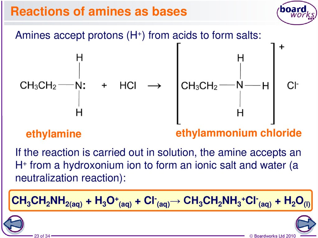 Reactions of amines as bases
