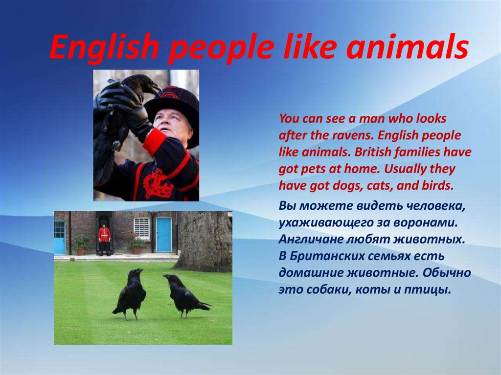 English people like animals
