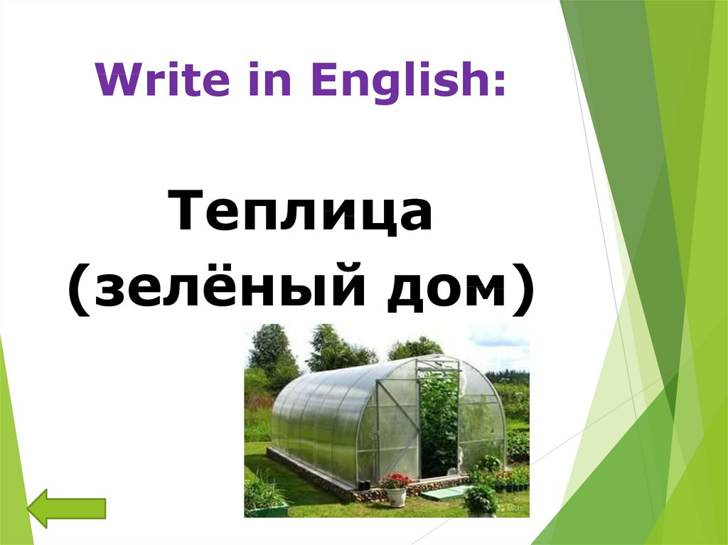 Write in English: