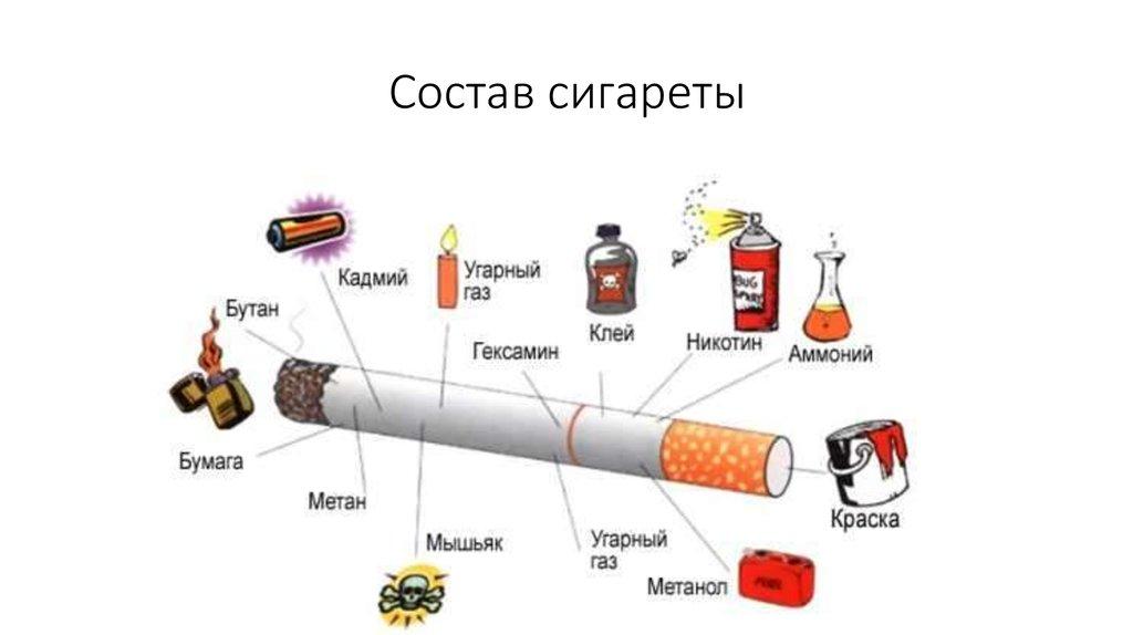 Из чего сделана сигарета картинка