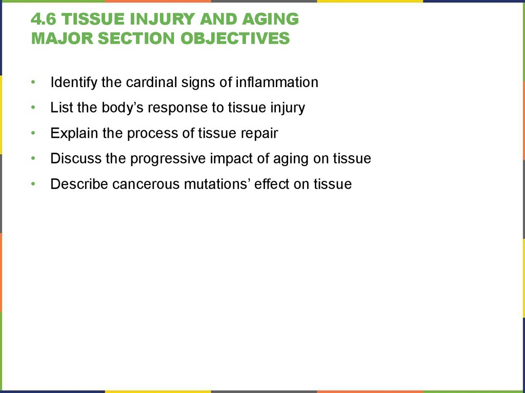 4.6 tissue injury and aging Major section Objectives