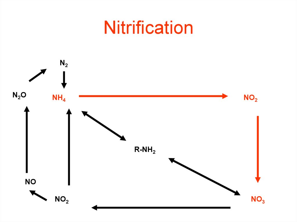 Nitrification