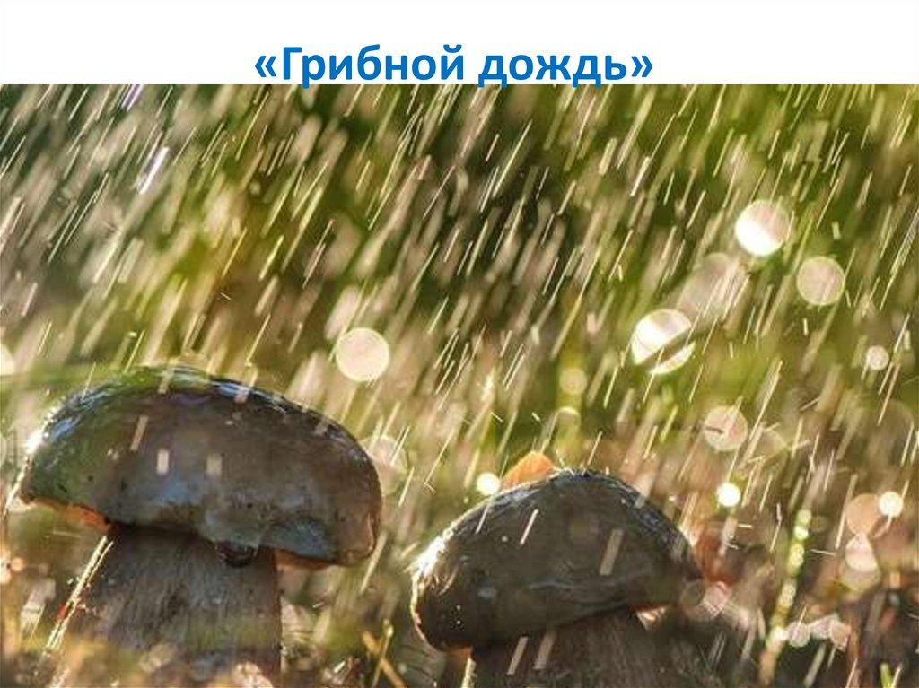 картинки 6 августа день дождя считают ближайшие промышленные