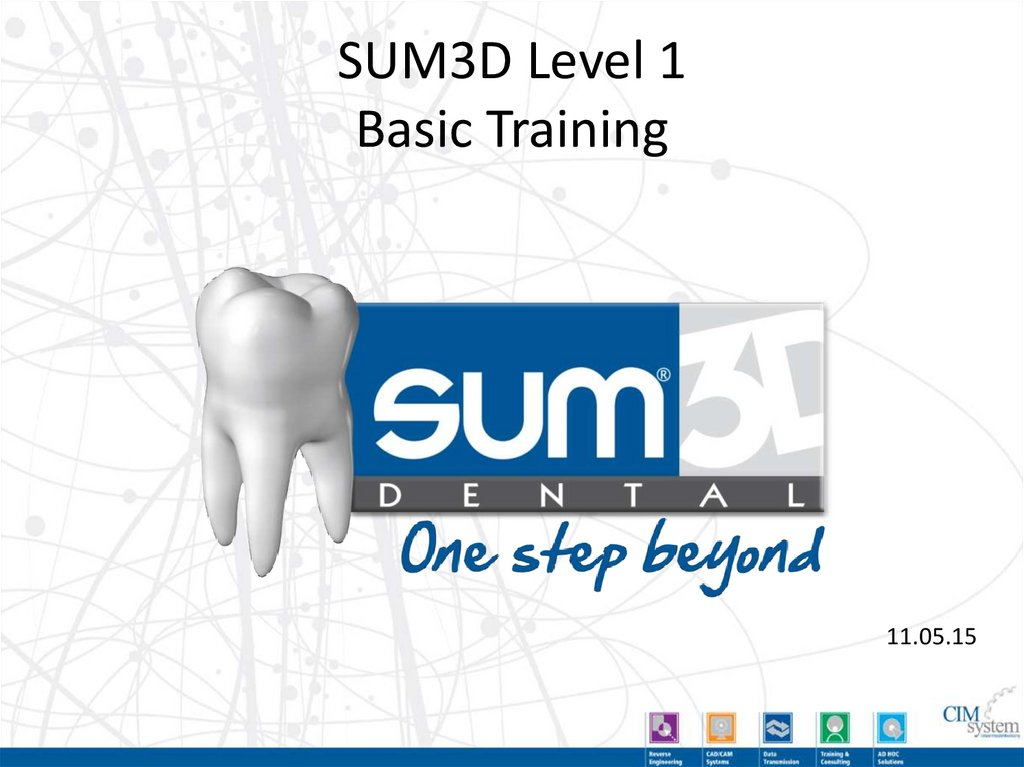 SUM3D Level 1 Basic Training