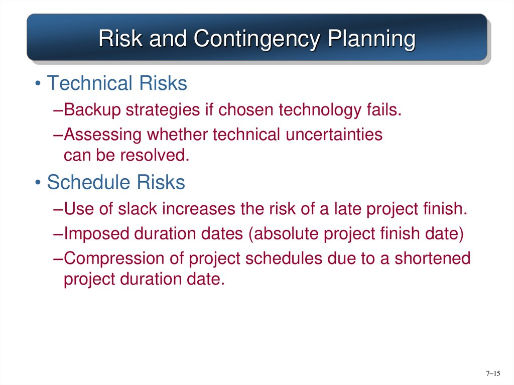 Risk and Contingency Planning
