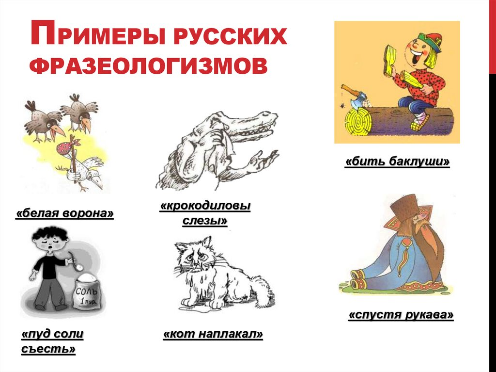 интересные фразеологизмы в интересных картинках предложения
