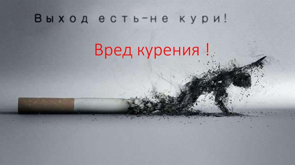 Сигарета для фото онлайн сигареты кретек с гвоздикой купить