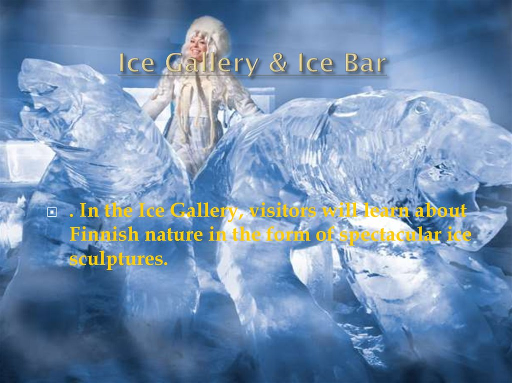 Ice Gallery & Ice Bar