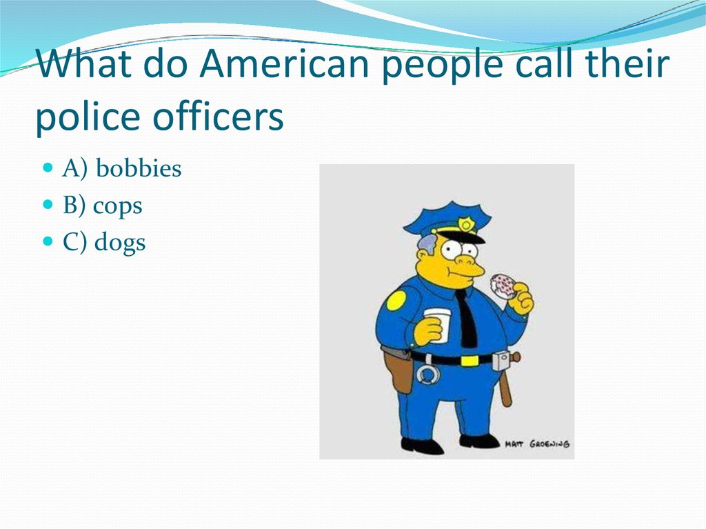 What do American people call their police officers
