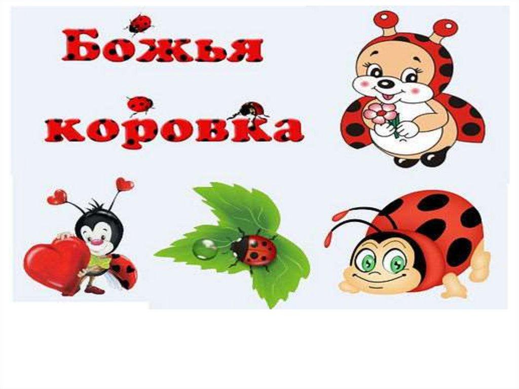 Ответы Mail.ru: Божьи коровки встречаются желтые, а раньше были ... | 767x1024