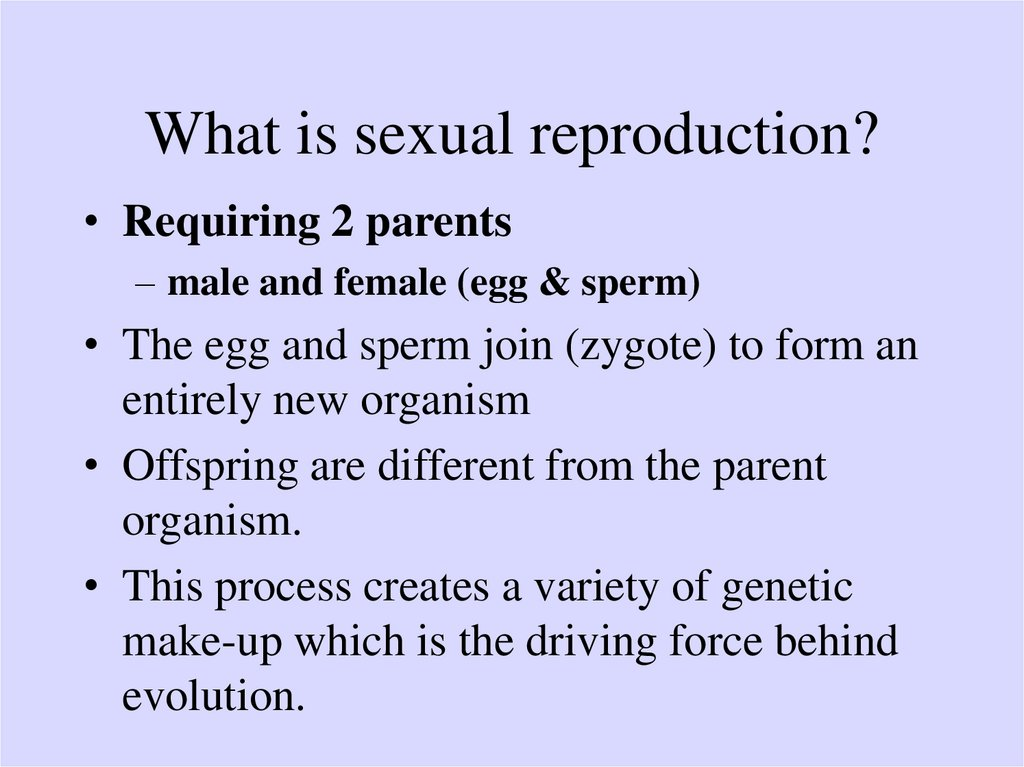 The Optimal Balance Between Sexual And Asexual Reproduction In Variable Environments
