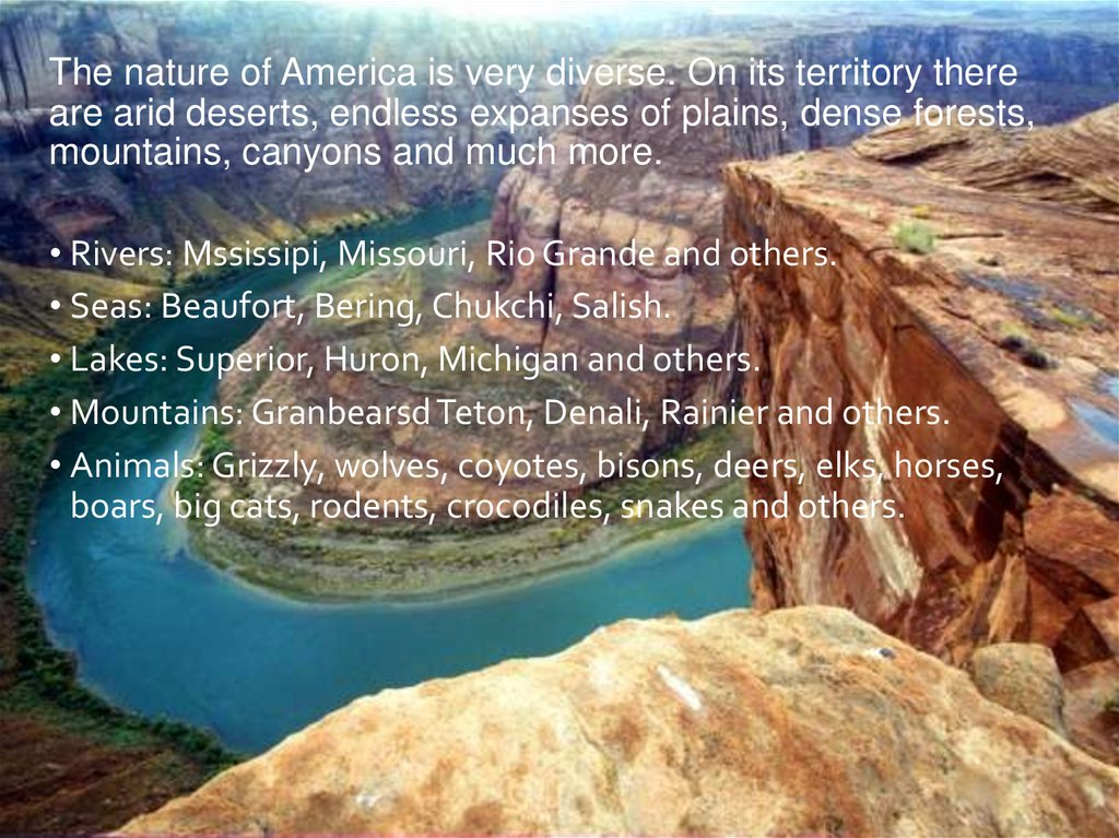The nature of America is very diverse. On its territory there are arid deserts, endless expanses of plains, dense forests,