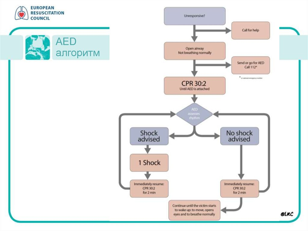 AED aлгоритм